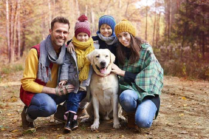 How Do Pet Insurance Know About Pre-existing Conditions